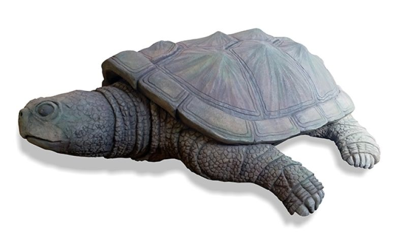 TC030_Snapping_Turtle